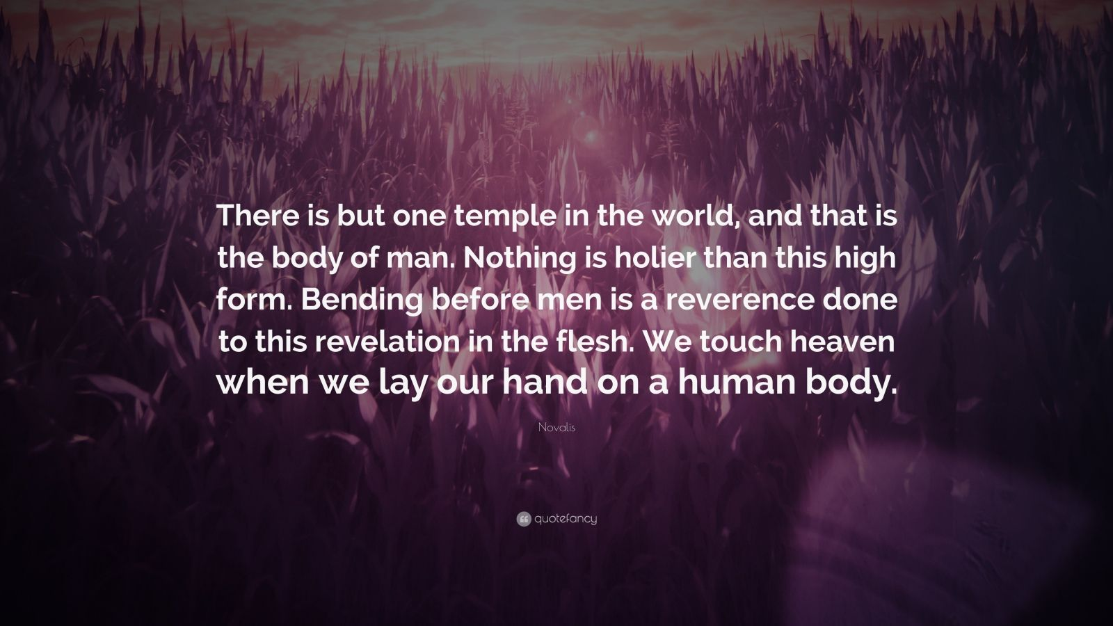 """Novalis Quote: """"There is but one temple in the world, and that is the body of man. Nothing is holier than this high form. Bending before men is a reverence done to this revelation in the flesh. We touch heaven when we lay our hand on a human body."""""""