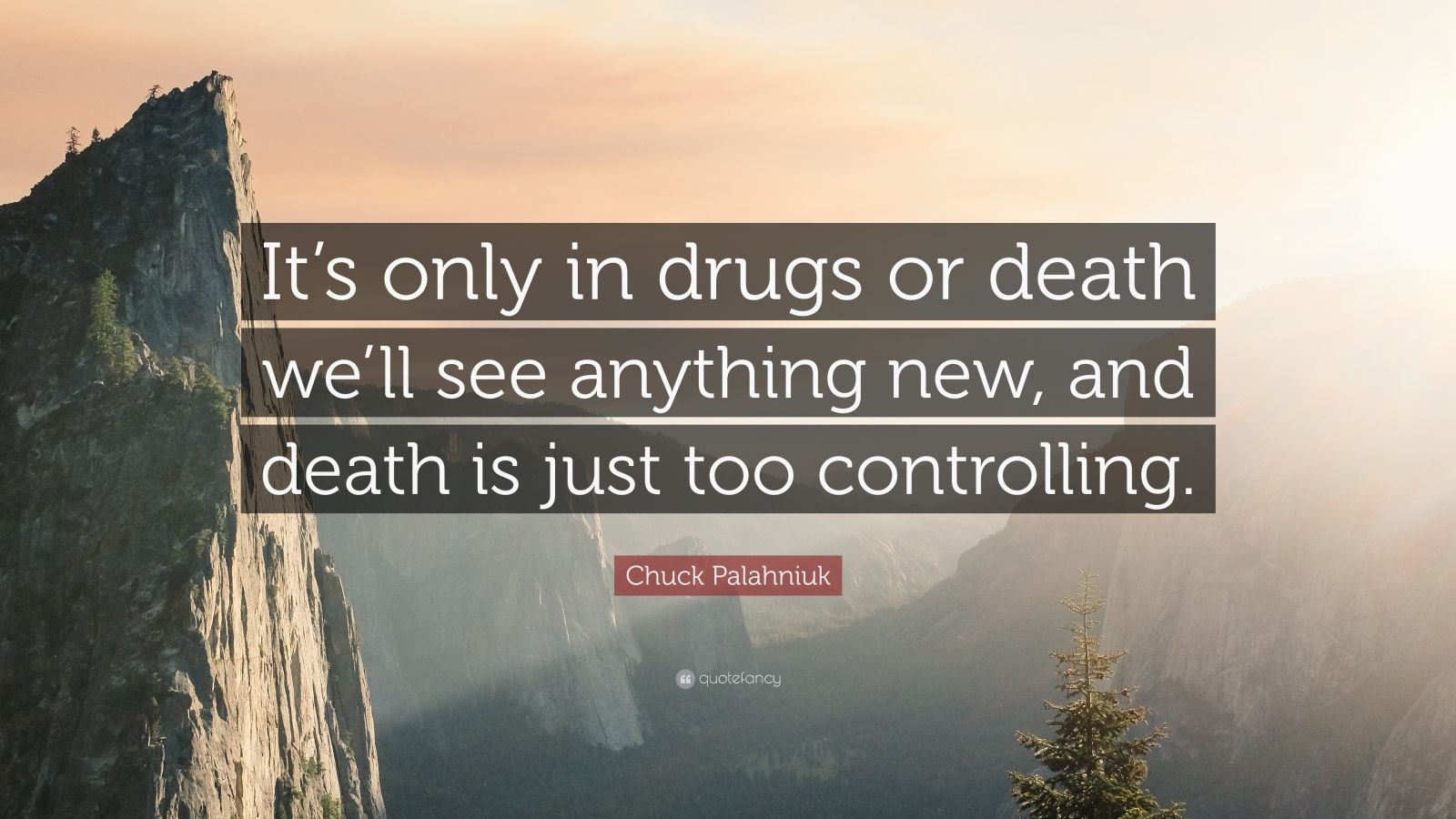 "Chuck Palahniuk Quote: ""It's only in drugs or death we'll see anything new, and death is just too controlling."""