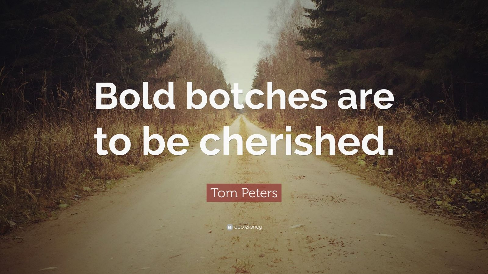 "Tom Peters Quote: ""Bold botches are to be cherished."""