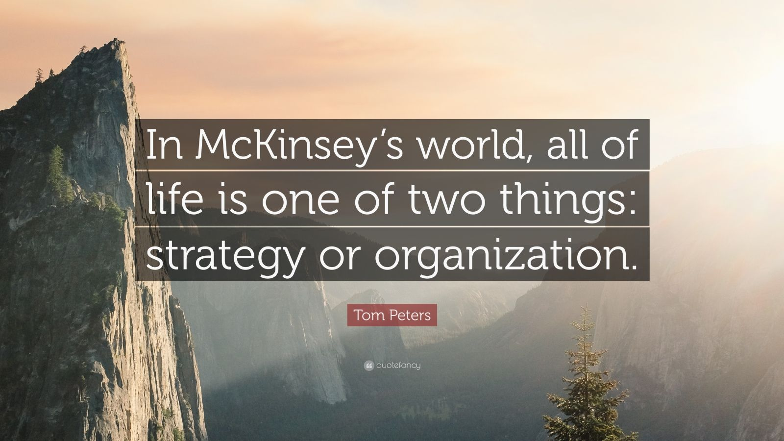 "Tom Peters Quote: ""In McKinsey's world, all of life is one of two things: strategy or organization."""