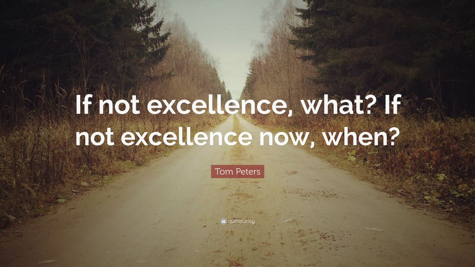 """Tom Peters Quote: """"If not excellence, what? If not excellence now, when?"""""""