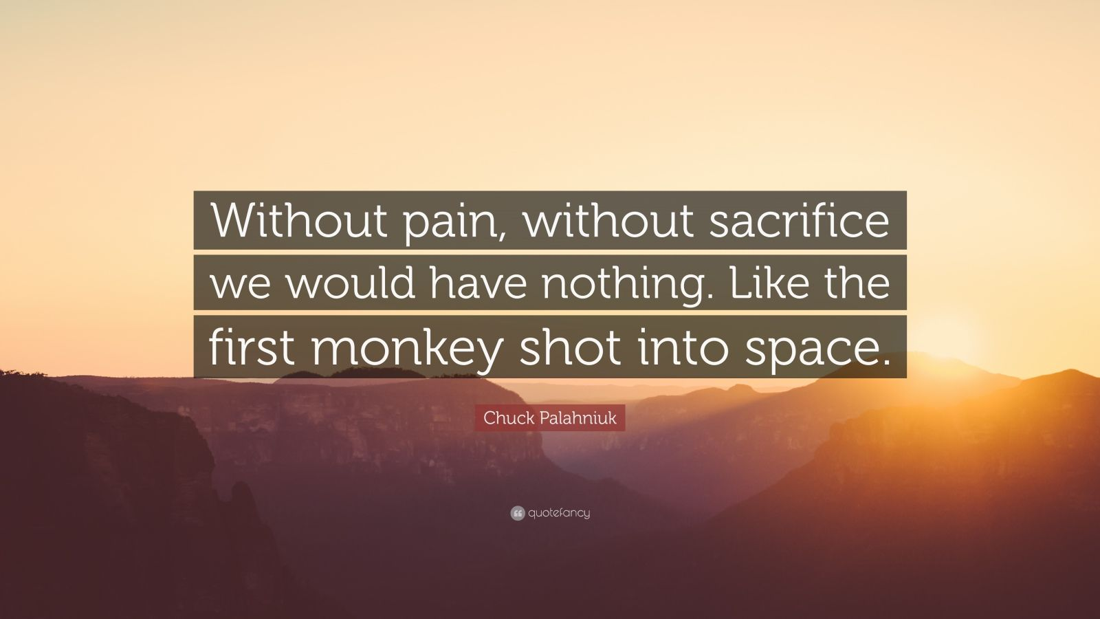 "Chuck Palahniuk Quote: ""Without pain, without sacrifice we would have nothing. Like the first monkey shot into space."""