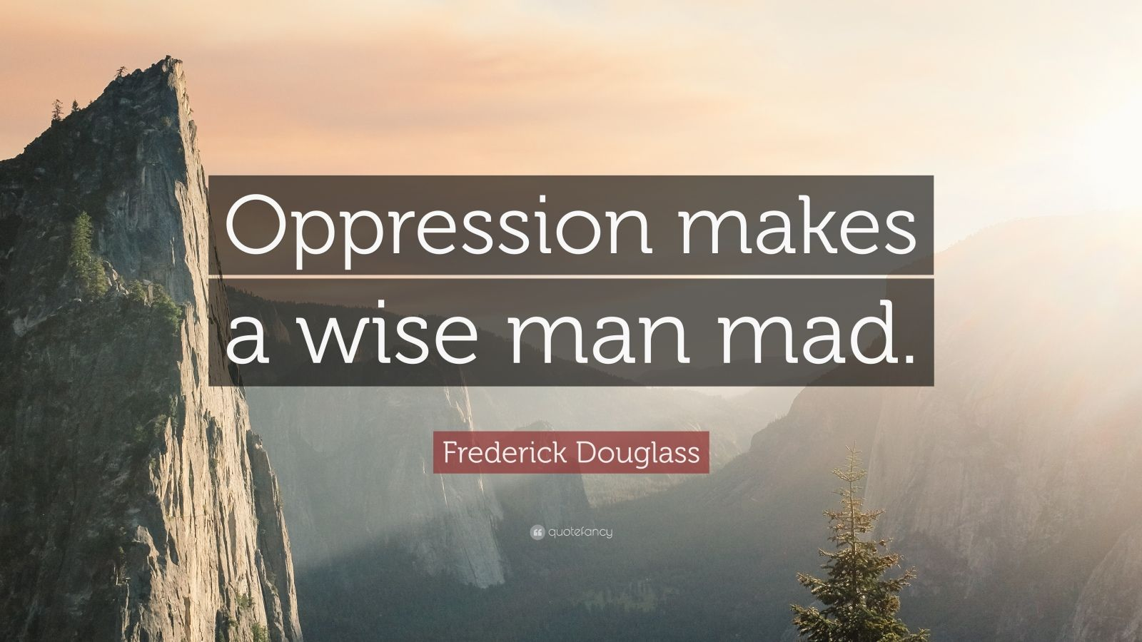 "Frederick Douglass Quote: ""Oppression makes a wise man mad."""