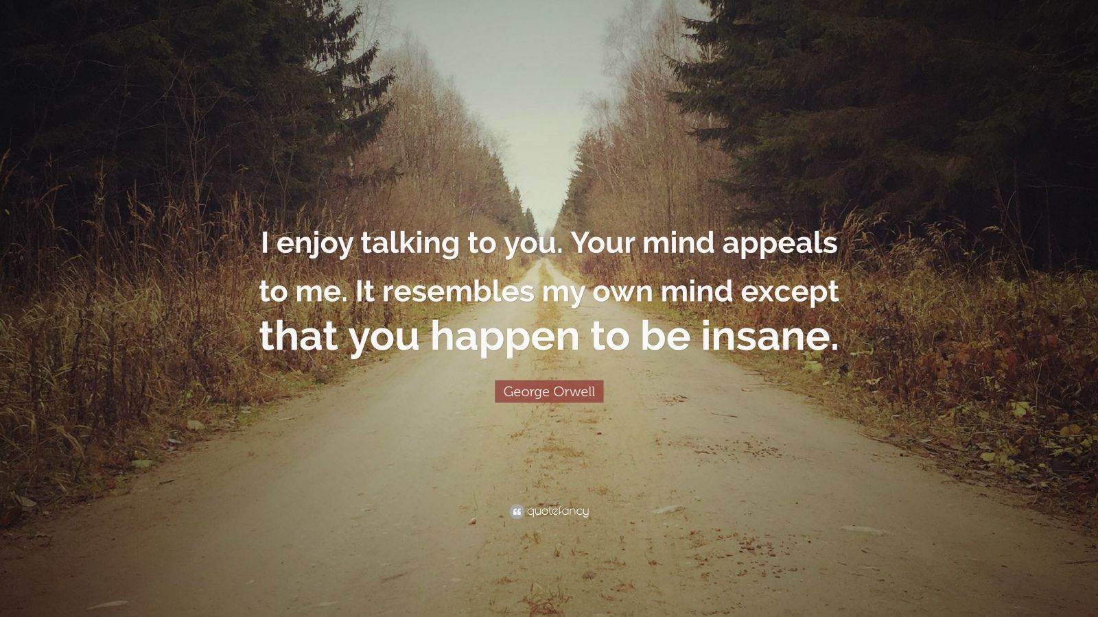 """George Orwell Quote: """"I enjoy talking to you. Your mind appeals to me. It resembles my own mind except that you happen to be insane."""""""
