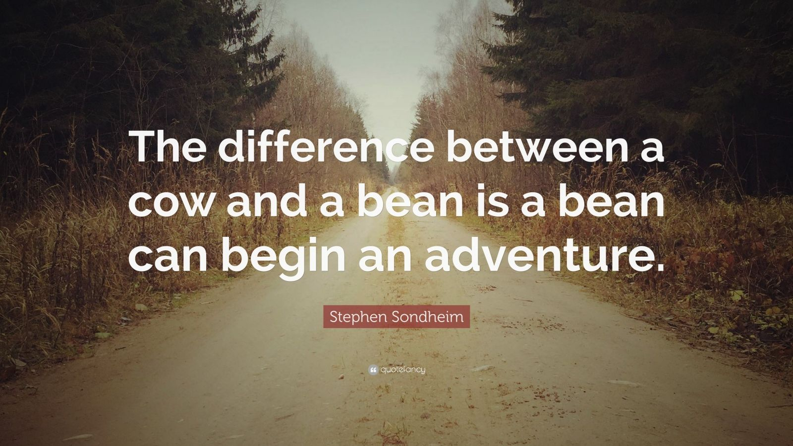 "Stephen Sondheim Quote: ""The difference between a cow and a bean is a bean can begin an adventure."""