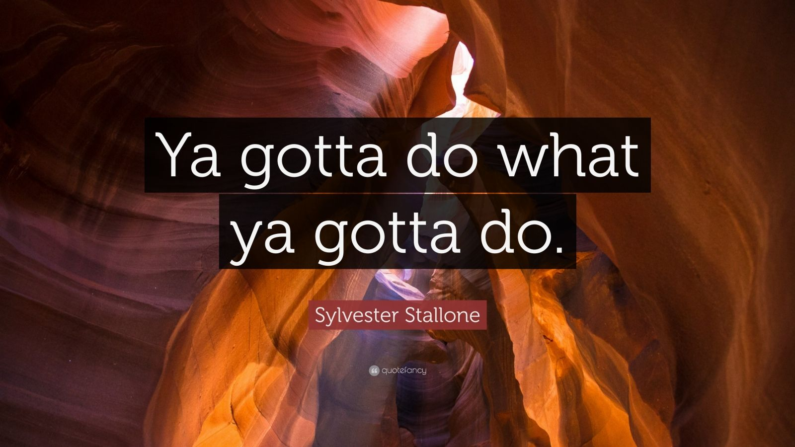 """Sylvester Stallone Quote: """"Ya gotta do what ya gotta do."""""""