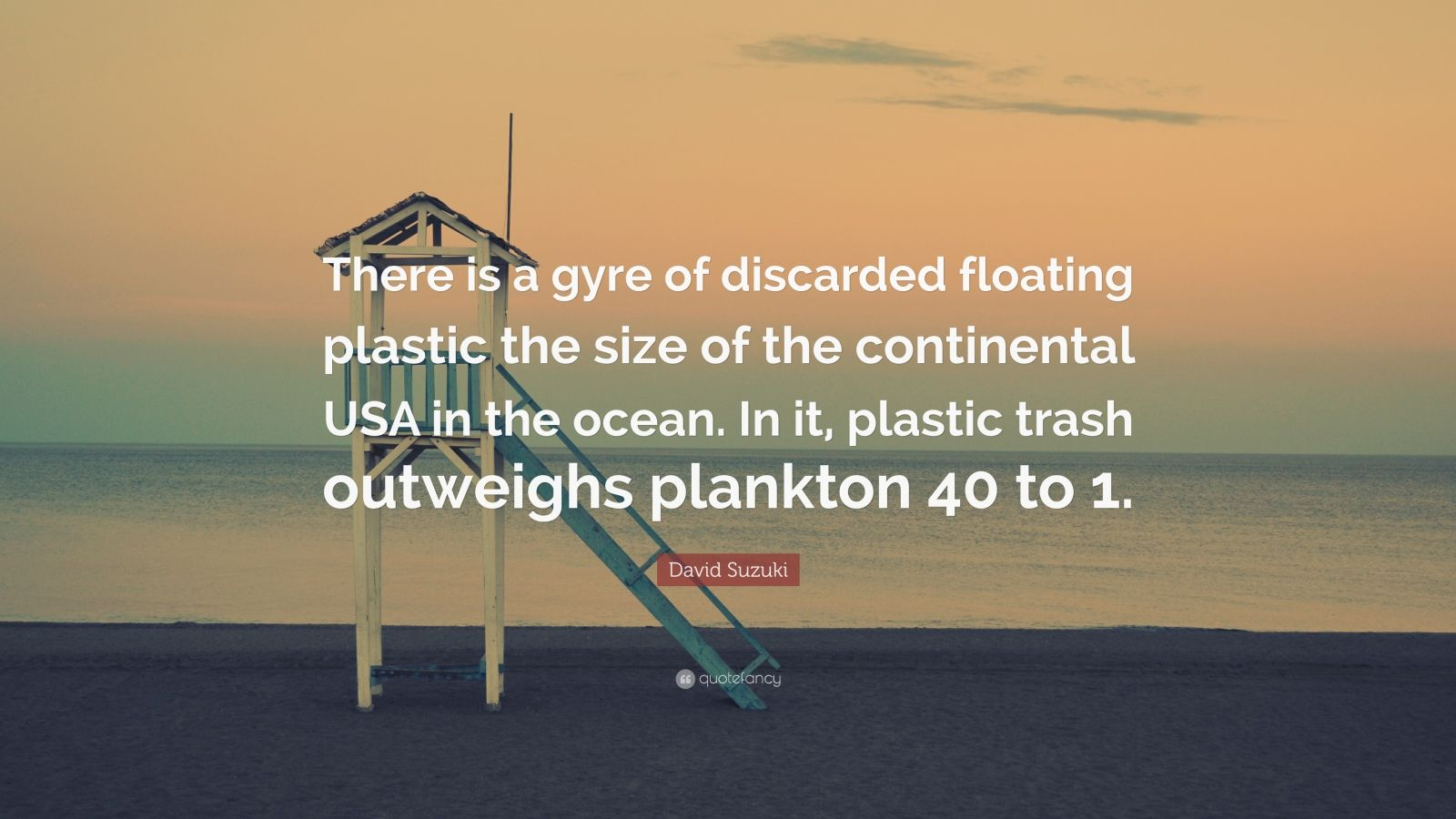 """David Suzuki Quote: """"There is a gyre of discarded floating plastic the size of the continental USA in the ocean. In it, plastic trash outweighs plankton 40 to 1."""""""