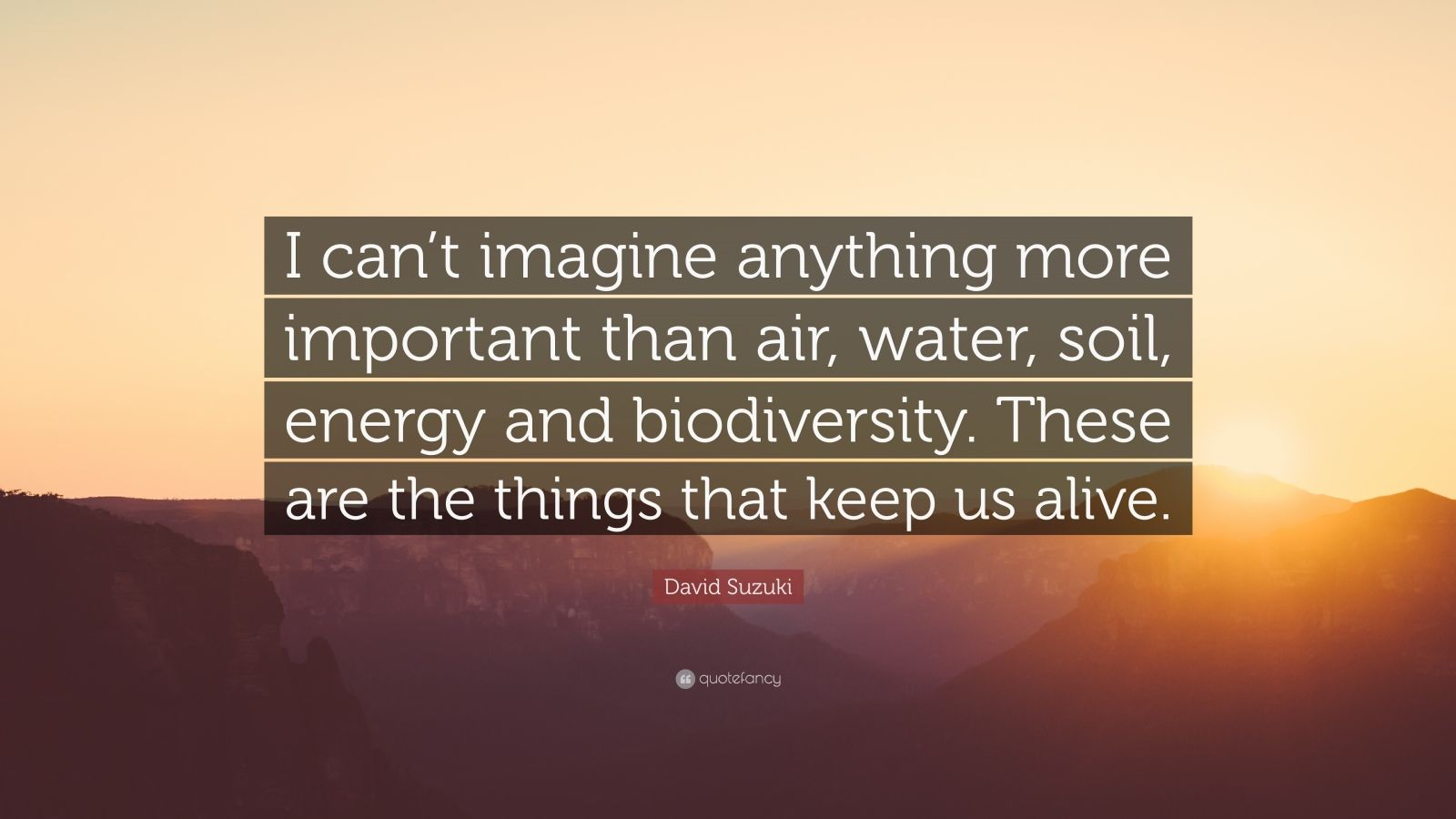 """David Suzuki Quote: """"I can't imagine anything more important than air, water, soil, energy and biodiversity. These are the things that keep us alive."""""""