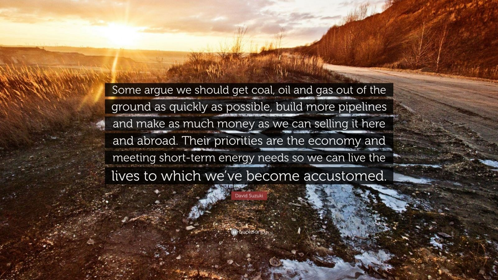 "David Suzuki Quote: ""Some argue we should get coal, oil and gas out of the ground as quickly as possible, build more pipelines and make as much money as we can selling it here and abroad. Their priorities are the economy and meeting short-term energy needs so we can live the lives to which we've become accustomed."""