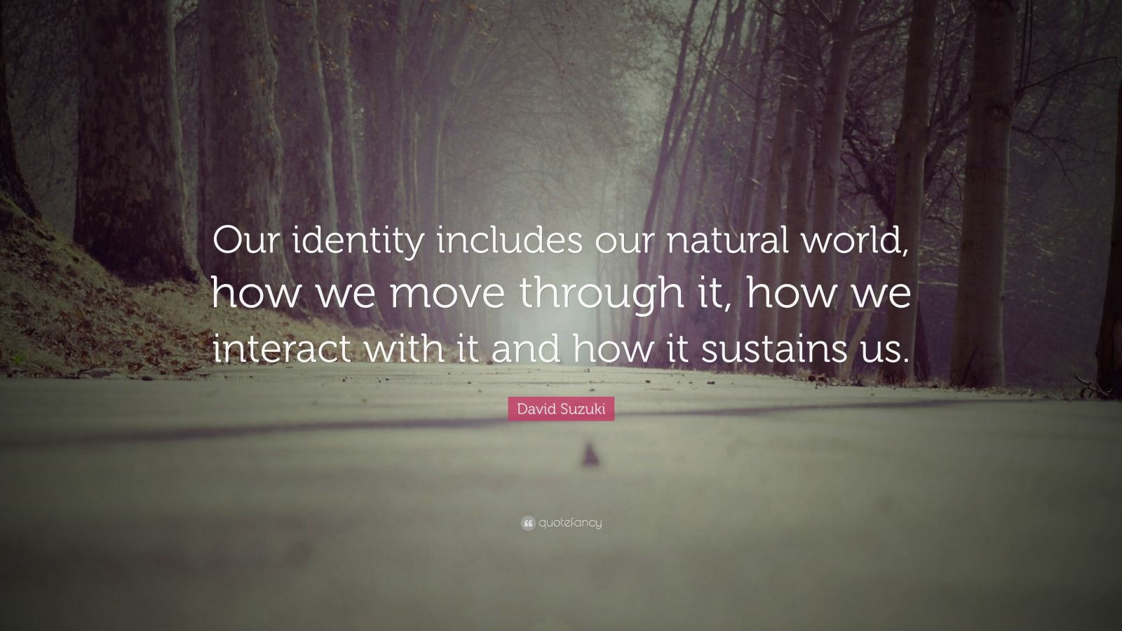 """David Suzuki Quote: """"Our identity includes our natural world, how we move through it, how we interact with it and how it sustains us."""""""