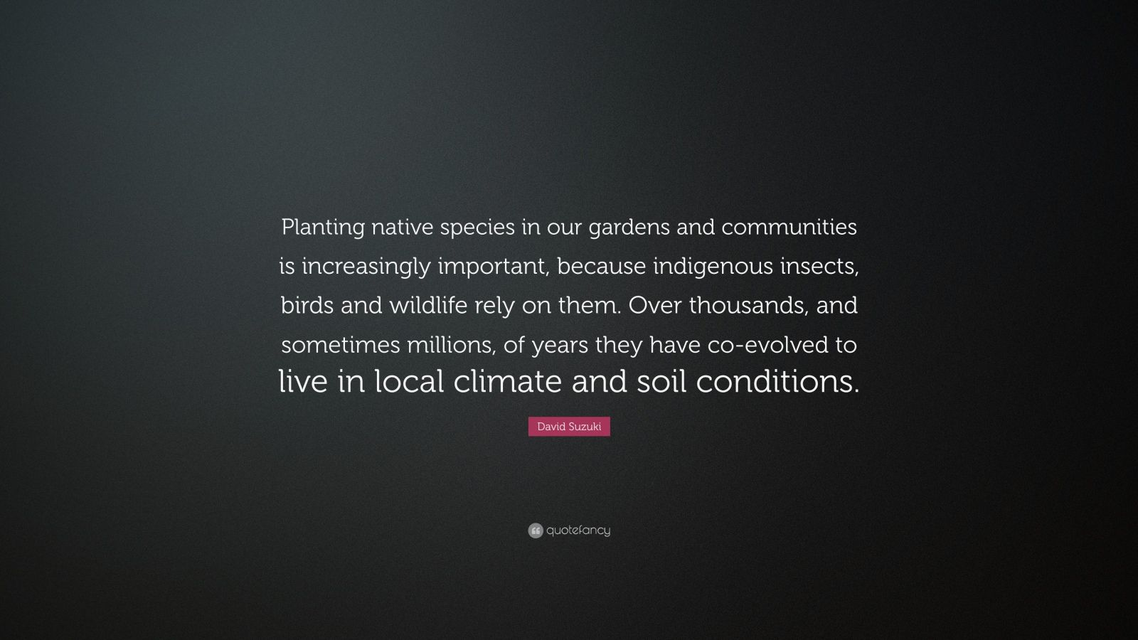 """David Suzuki Quote: """"Planting native species in our gardens and communities is increasingly important, because indigenous insects, birds and wildlife rely on them. Over thousands, and sometimes millions, of years they have co-evolved to live in local climate and soil conditions."""""""