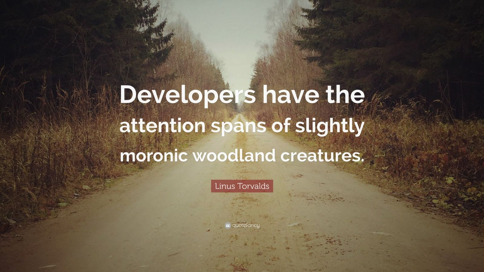 """Linus Torvalds Quote: """"Developers have the attention spans of slightly moronic woodland creatures."""""""