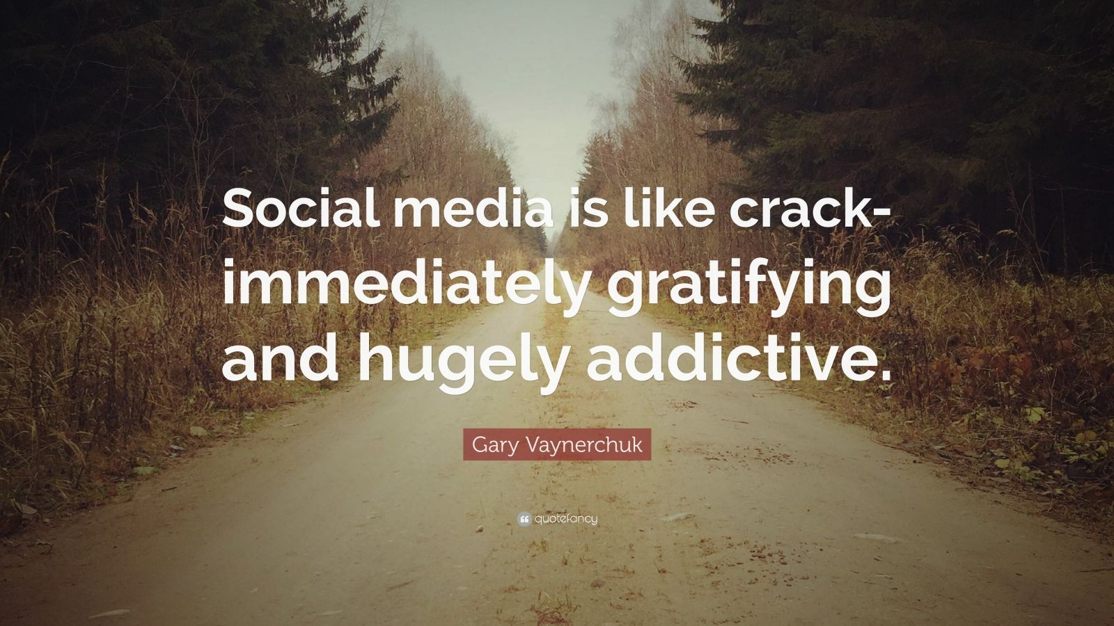 "Gary Vaynerchuk Quote: ""Social media is like crack-immediately gratifying and hugely addictive."""