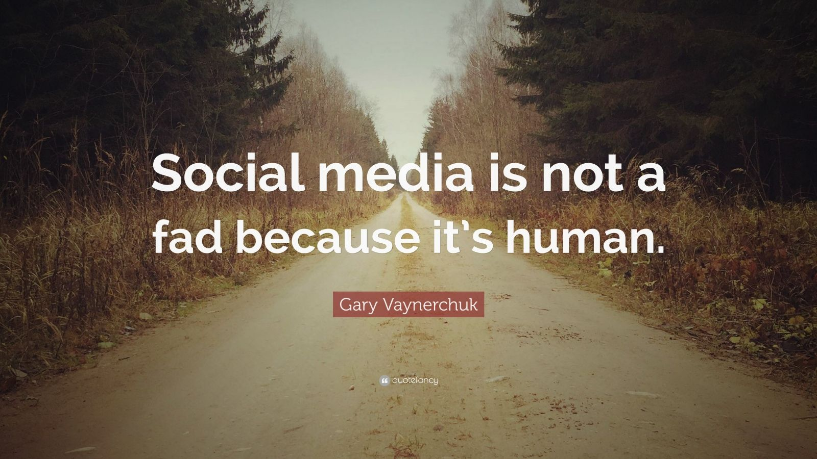 """Gary Vaynerchuk Quote: """"Social media is not a fad because it's human."""""""