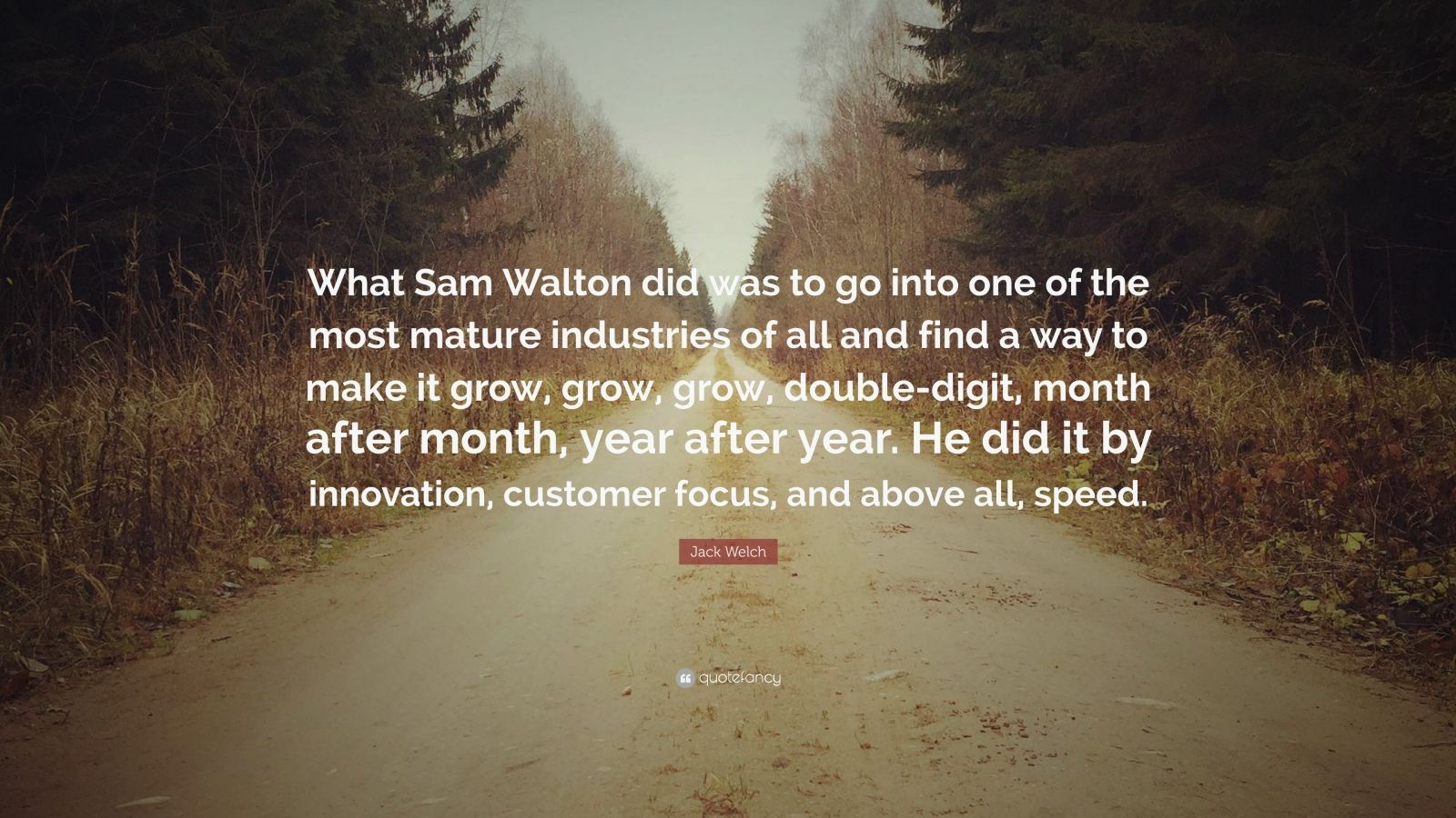 """Jack Welch Quote: """"What Sam Walton did was to go into one of the most mature industries of all and find a way to make it grow, grow, grow, double-digit, month after month, year after year. He did it by innovation, customer focus, and above all, speed."""""""