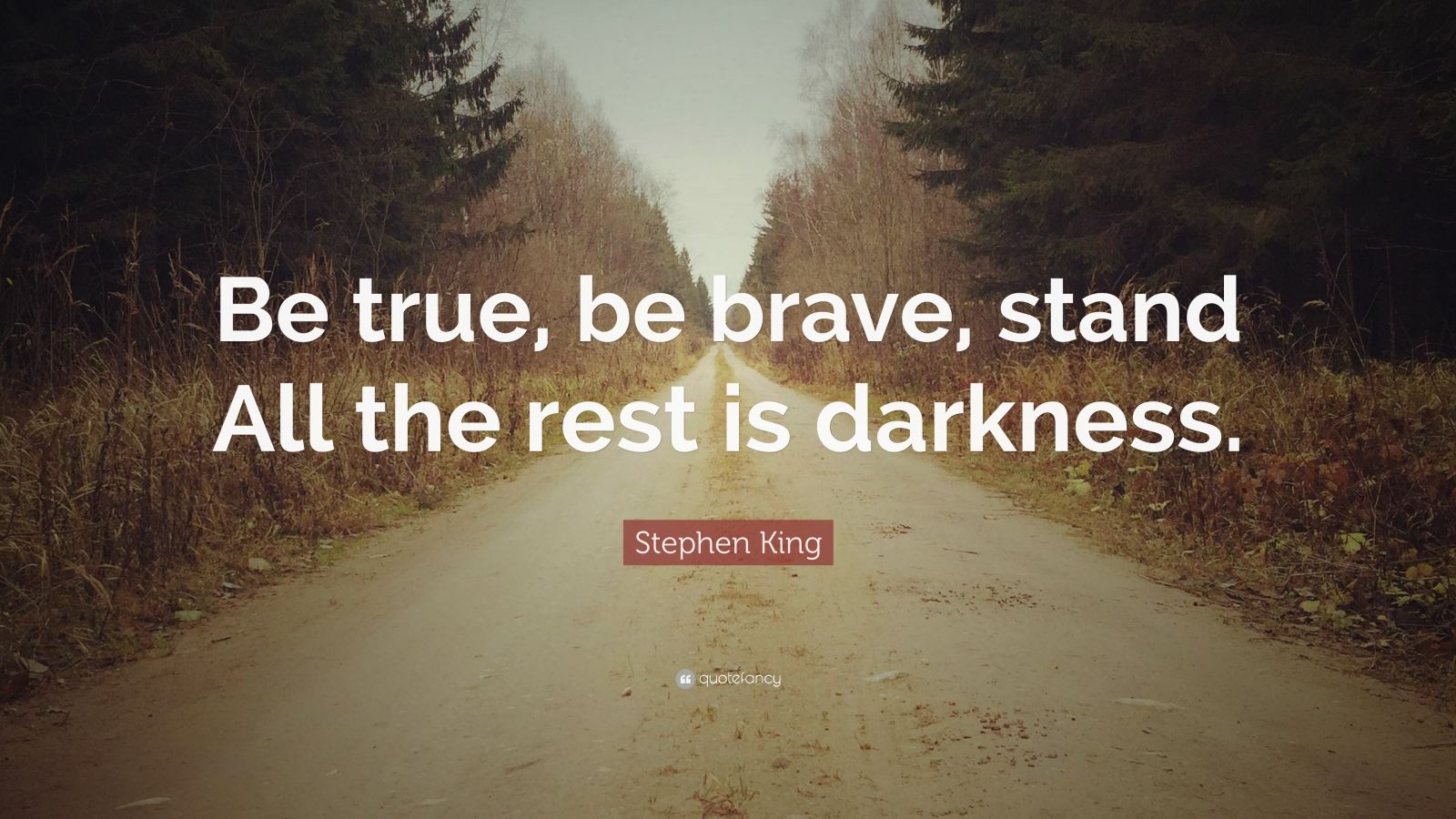 "Stephen King Quote: ""Be true, be brave, stand All the rest is darkness."""