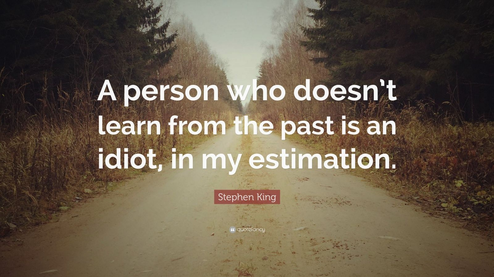 "Stephen King Quote: ""A person who doesn't learn from the past is an idiot, in my estimation."""