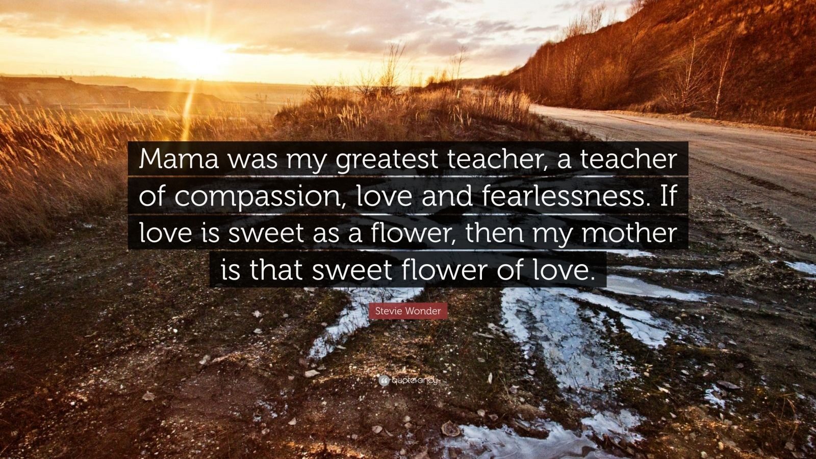 "Stevie Wonder Quote: ""Mama was my greatest teacher, a teacher of compassion, love and fearlessness. If love is sweet as a flower, then my mother is that sweet flower of love."""