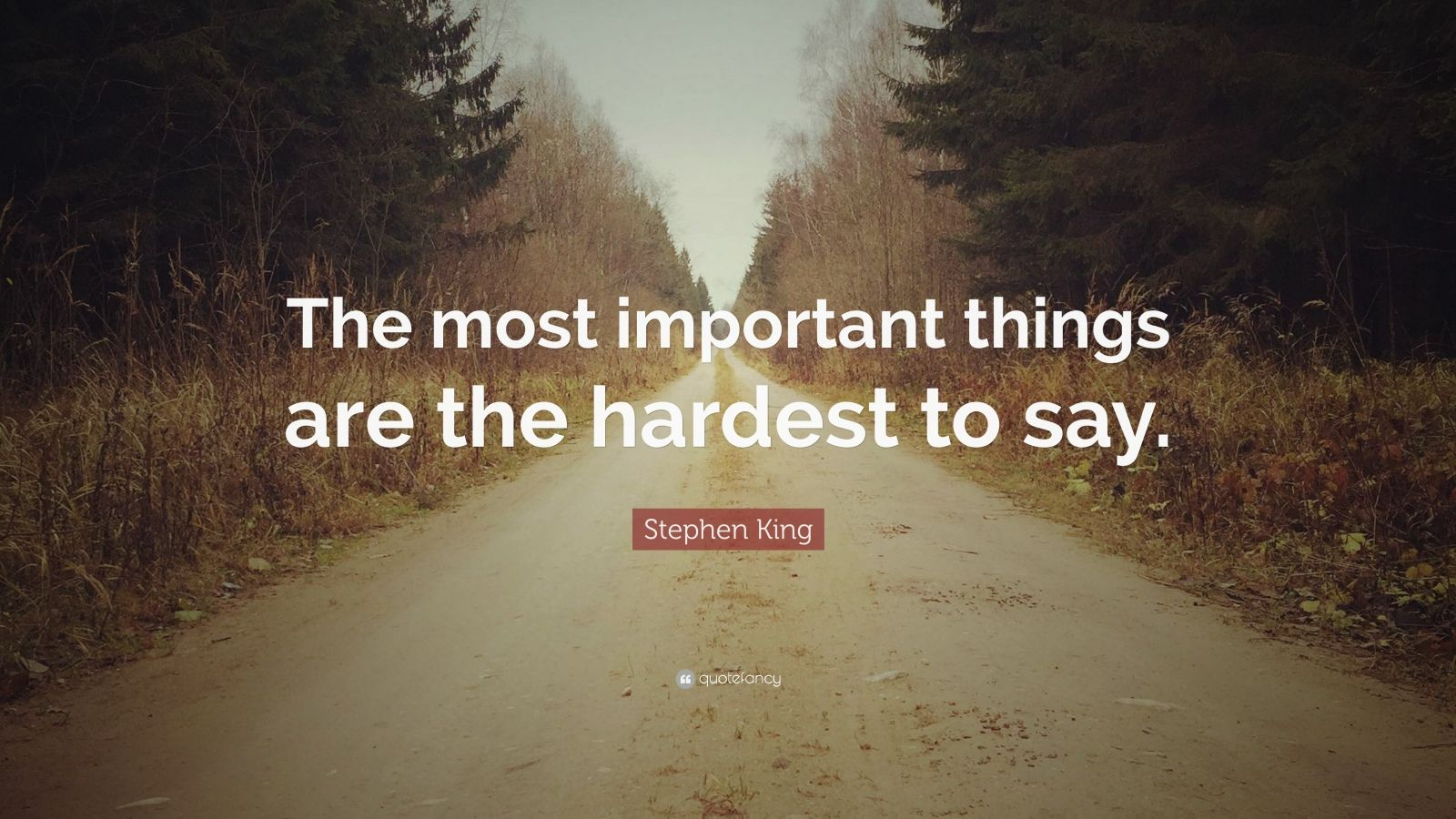 """Stephen King Quote: """"The most important things are the hardest to say."""""""