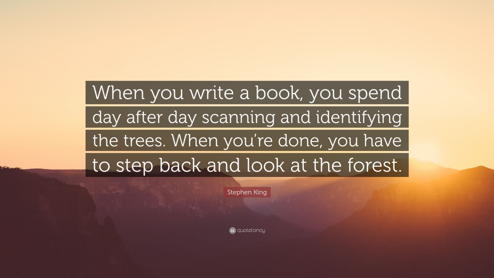 """Stephen King Quote: """"When you write a book, you spend day after day scanning and identifying the trees. When you're done, you have to step back and look at the forest."""""""