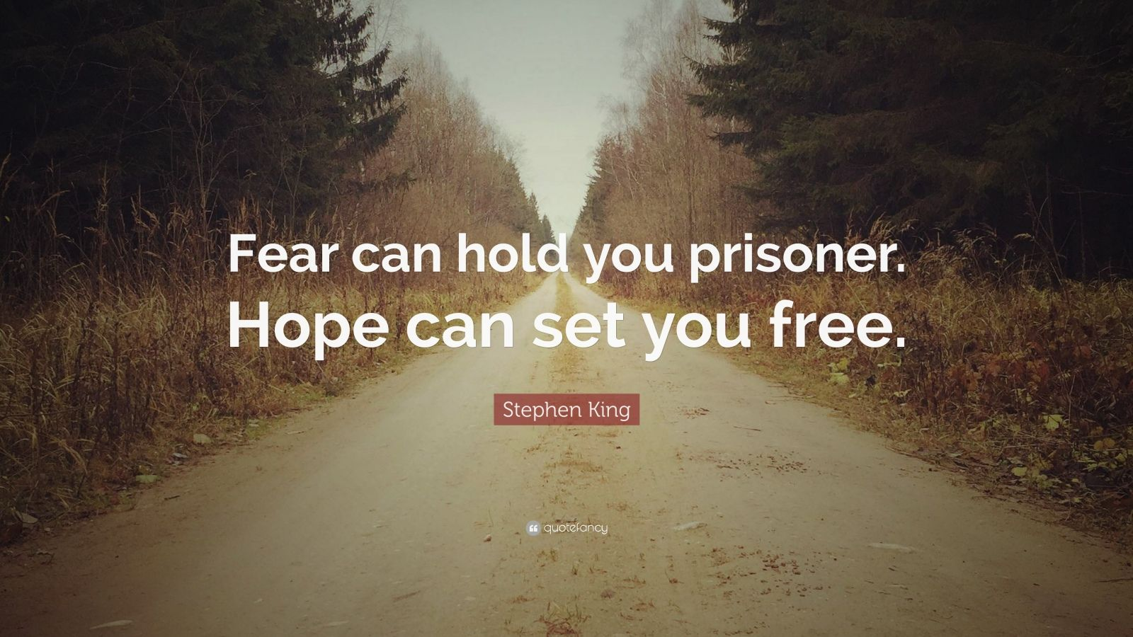 """Stephen King Quote: """"Fear can hold you prisoner. Hope can set you free."""""""