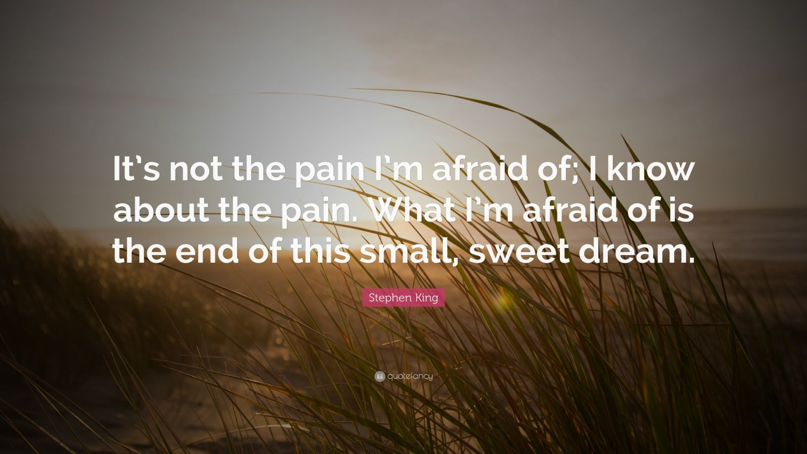 """Stephen King Quote: """"It's not the pain I'm afraid of; I know about the pain. What I'm afraid of is the end of this small, sweet dream."""""""