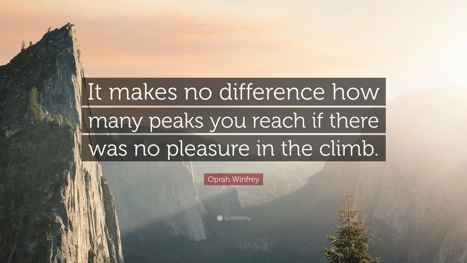 """Oprah Winfrey Quote: """"It makes no difference how many peaks you reach if there was no pleasure in the climb."""""""
