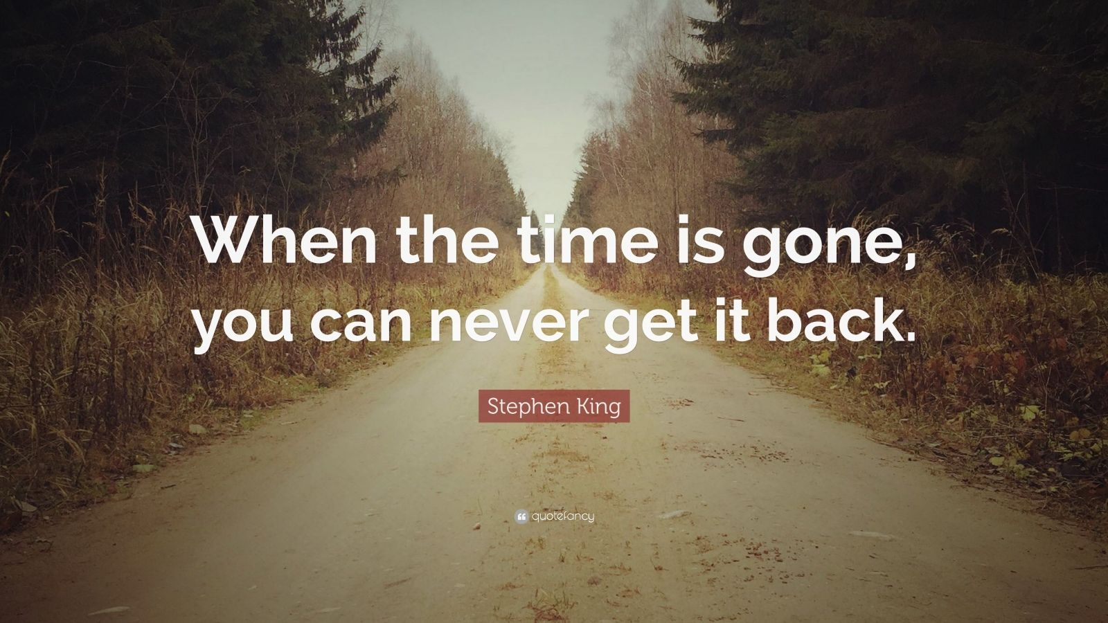 "Stephen King Quote: ""When the time is gone, you can never get it back."""