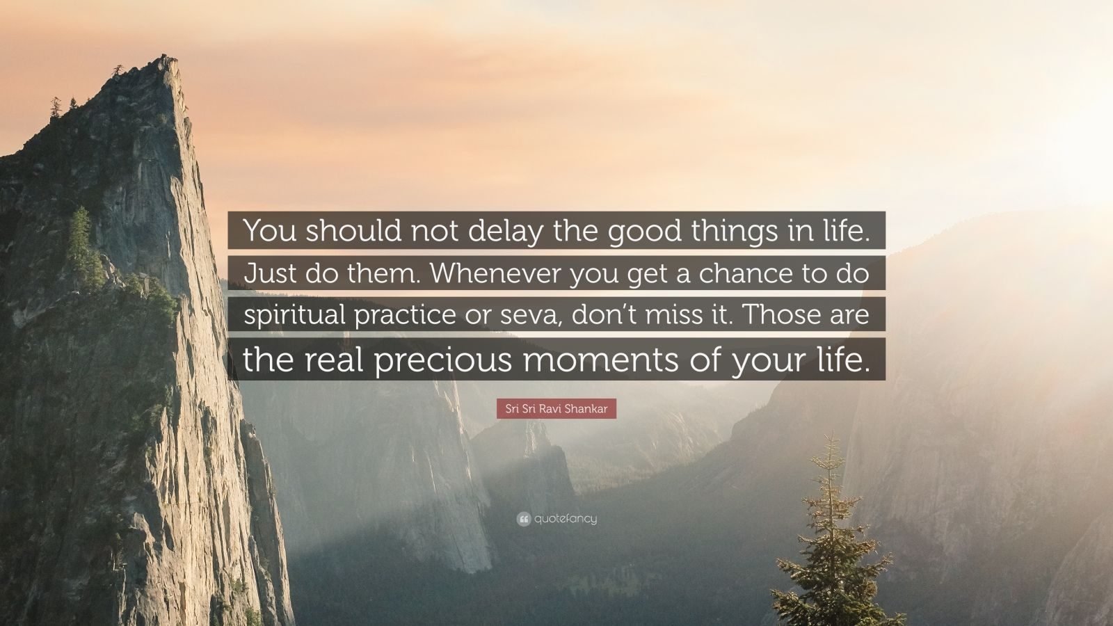 """Sri Sri Ravi Shankar Quote: """"You should not delay the good things in life. Just do them. Whenever you get a chance to do spiritual practice or seva, don't miss it. Those are the real precious moments of your life."""""""