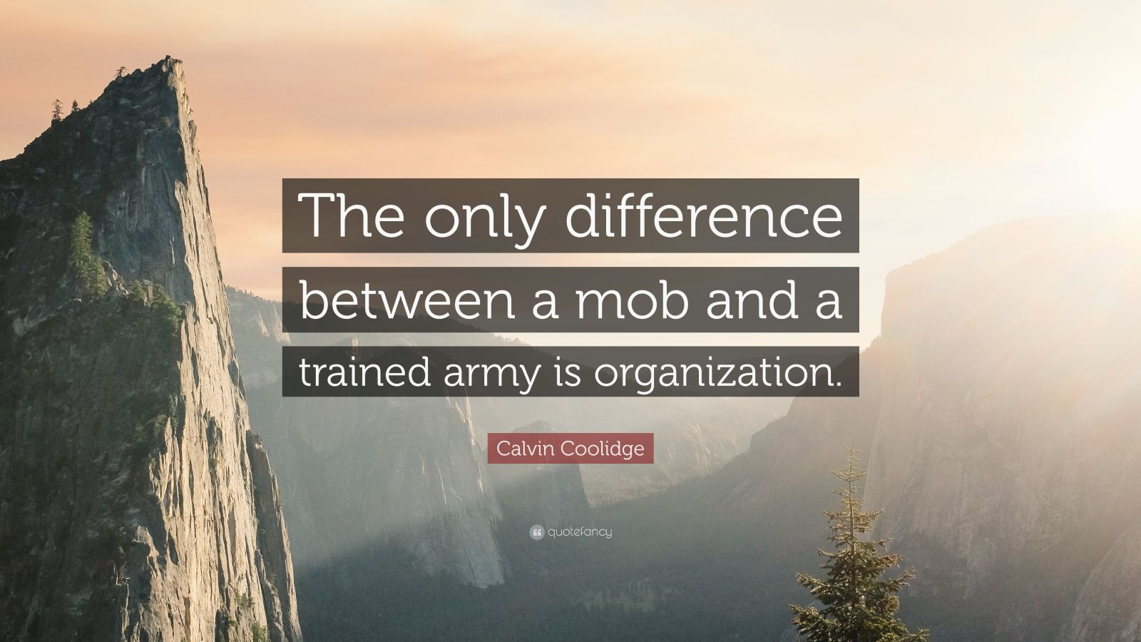 """Calvin Coolidge Quote: """"The only difference between a mob and a trained army is organization."""""""