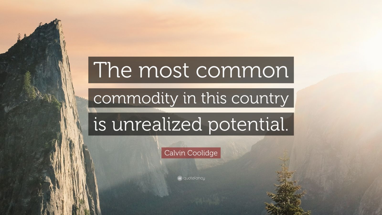 """Calvin Coolidge Quote: """"The most common commodity in this country is unrealized potential."""""""
