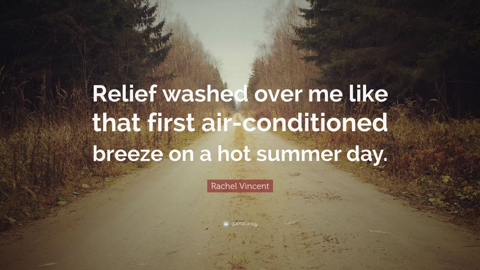 "Rachel Vincent Quote: ""Relief washed over me like that first air-conditioned breeze on a hot summer day."""