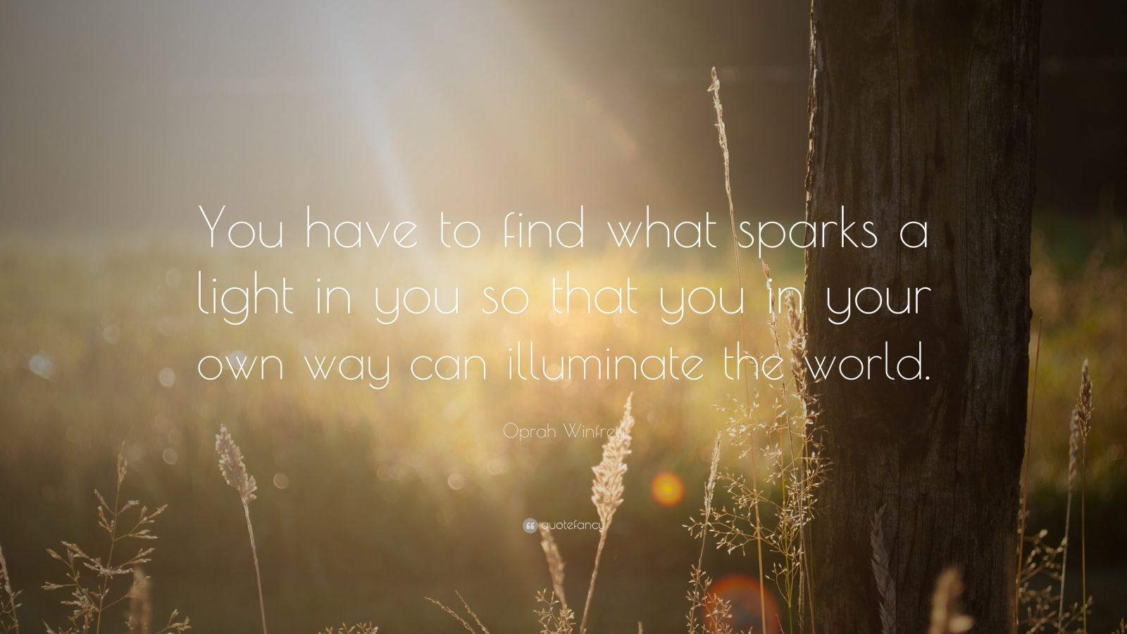 "Oprah Winfrey Quote: ""You have to find what sparks a light in you so that you in your own way can illuminate the world."""