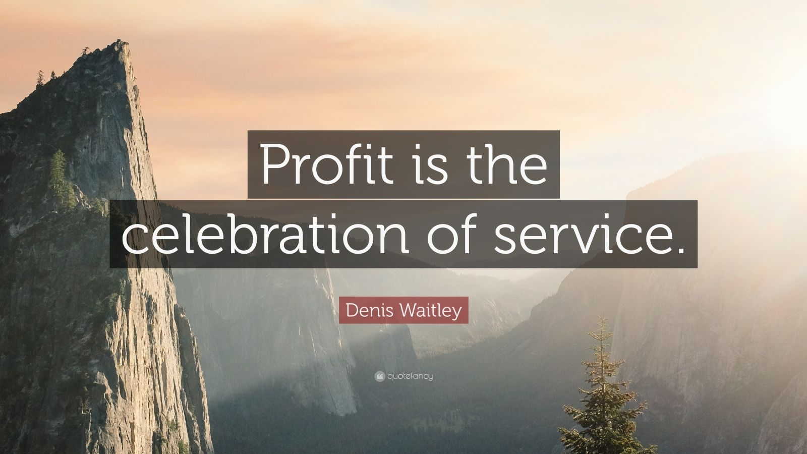 """Denis Waitley Quote: """"Profit is the celebration of service."""""""