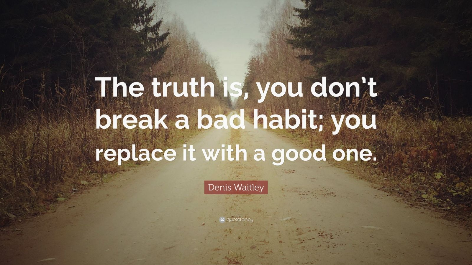 "Denis Waitley Quote: ""The truth is, you don't break a bad habit; you replace it with a good one."""