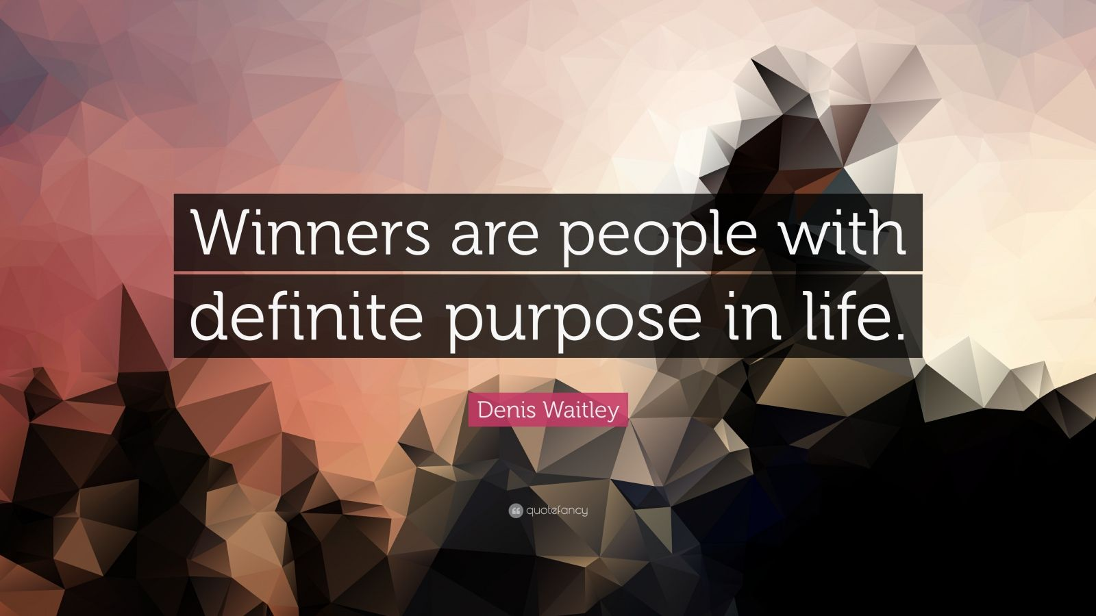 "Denis Waitley Quote: ""Winners are people with definite purpose in life."""