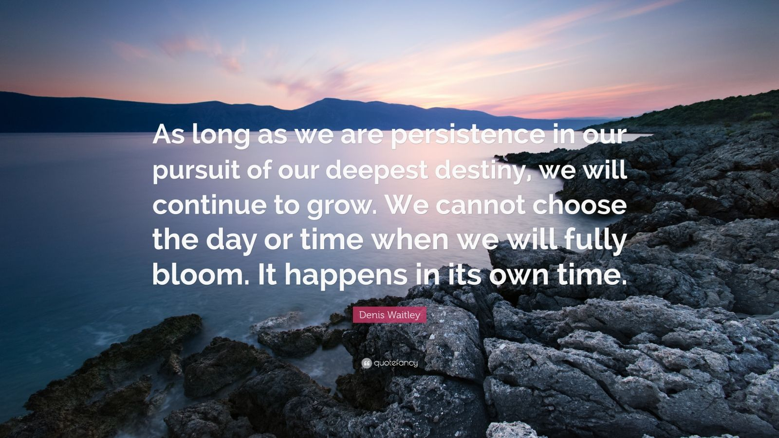 "Denis Waitley Quote: ""As long as we are persistence in our pursuit of our deepest destiny, we will continue to grow. We cannot choose the day or time when we will fully bloom. It happens in its own time."""