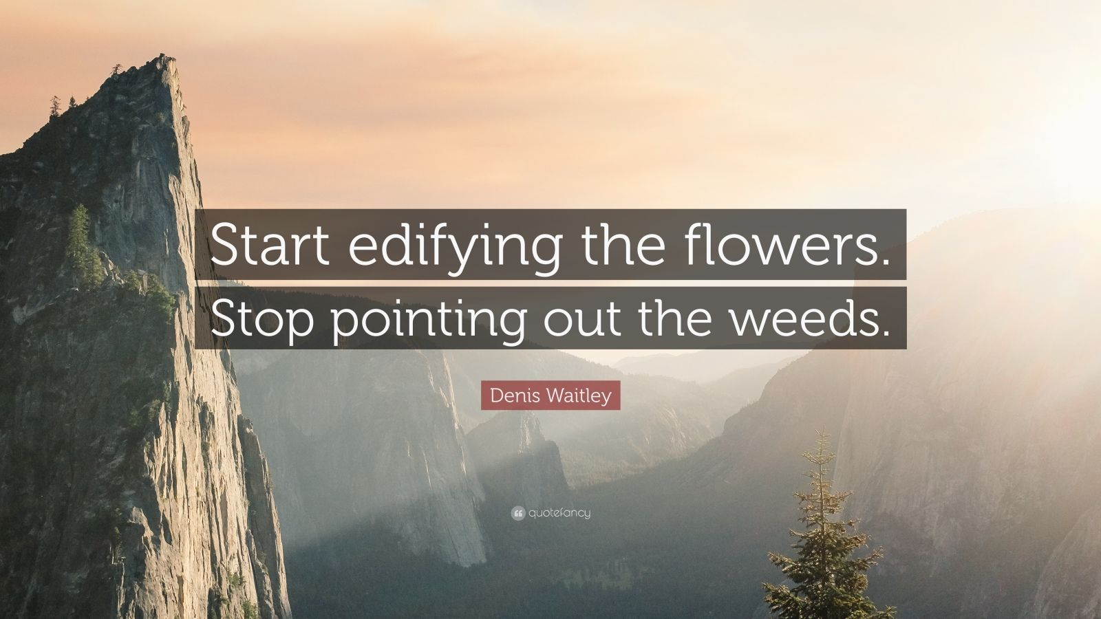 "Denis Waitley Quote: ""Start edifying the flowers. Stop pointing out the weeds."""