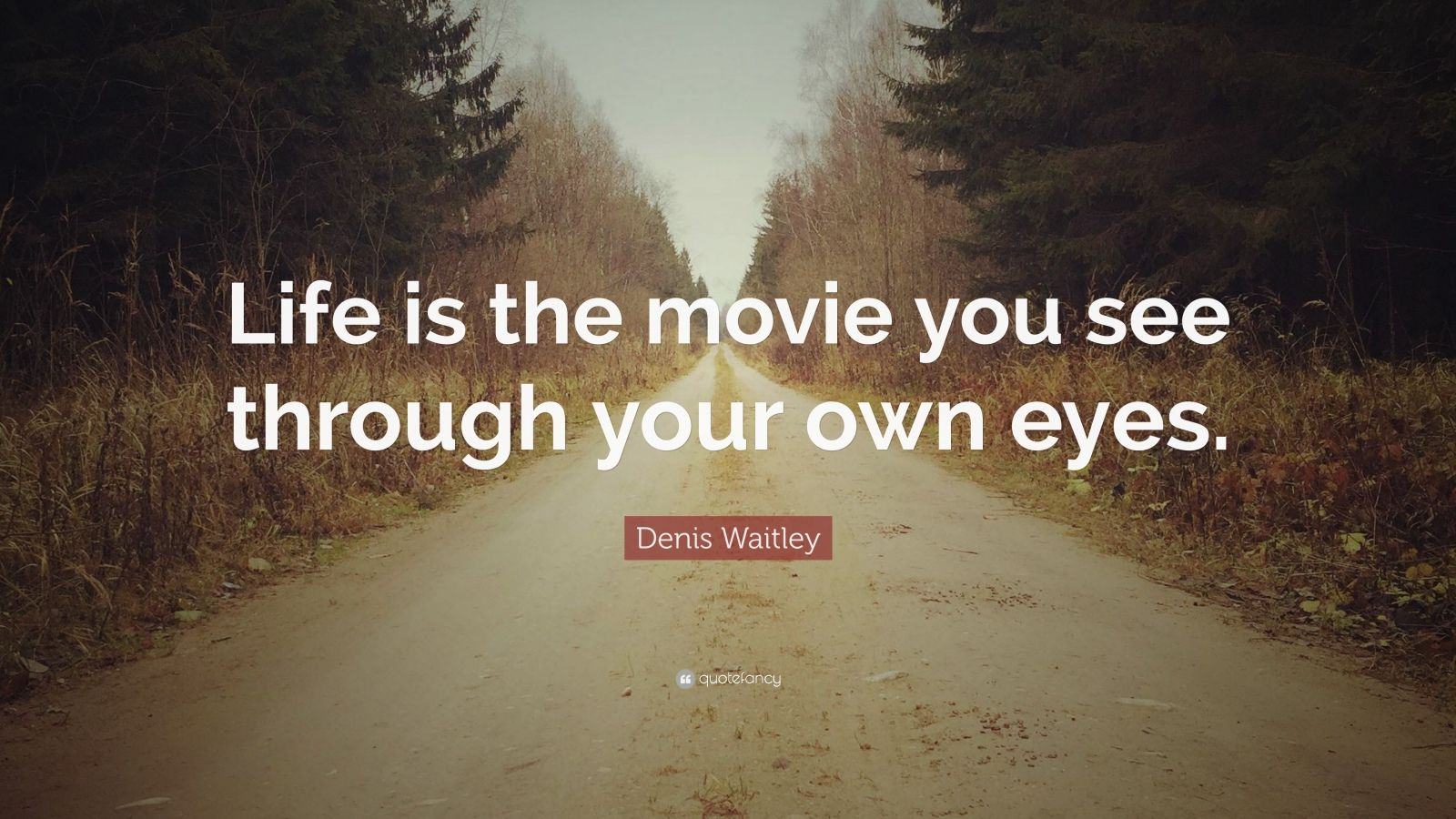 "Denis Waitley Quote: ""Life is the movie you see through your own eyes."""