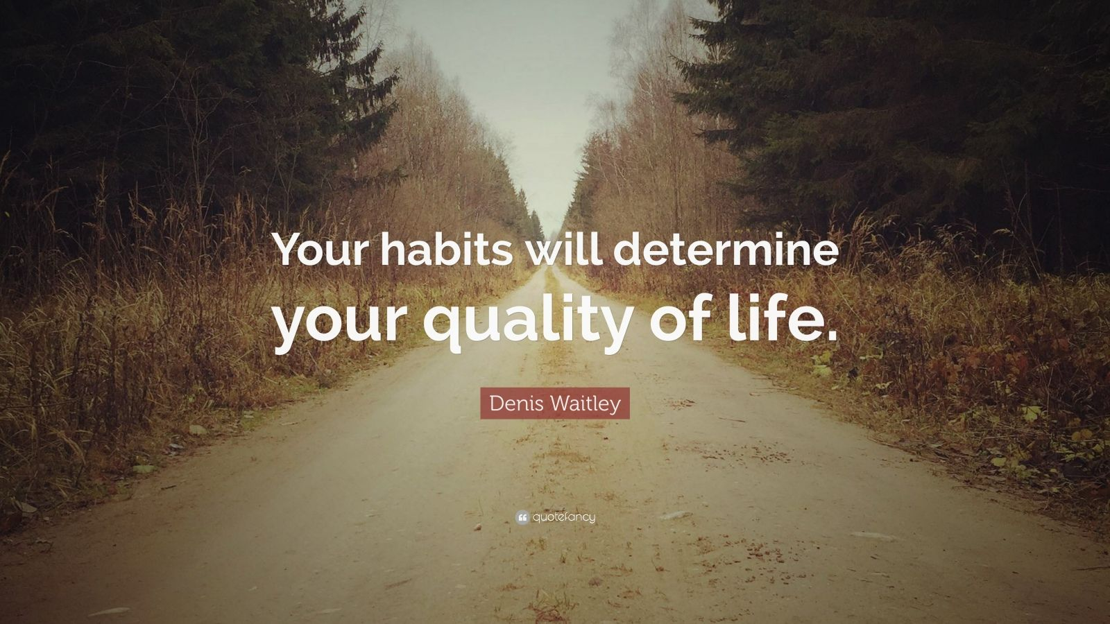 """Denis Waitley Quote: """"Your habits will determine your quality of life."""""""