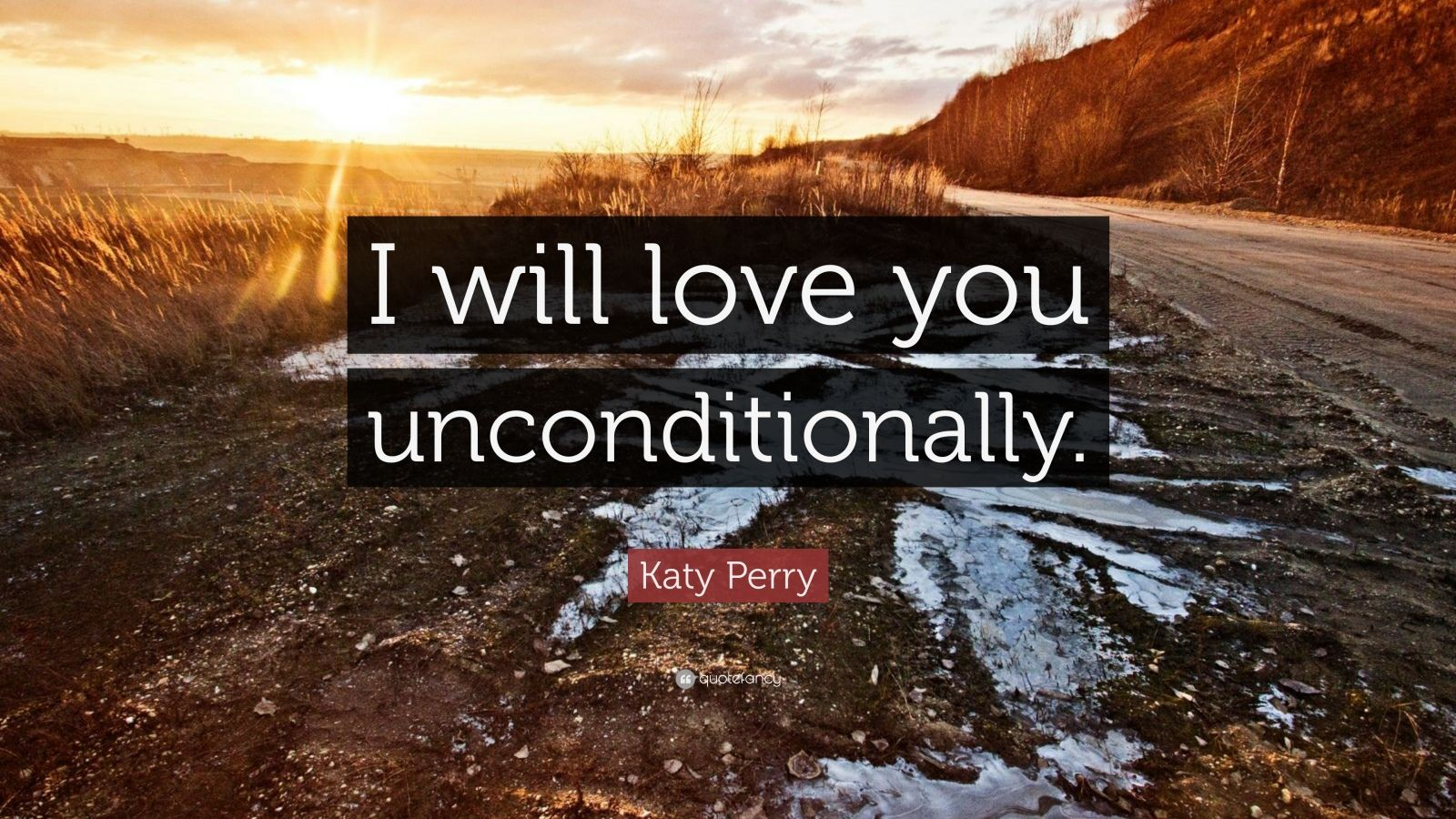 I Love You Unconditionally Quotes : Katy Perry Quote: ?I will love you unconditionally.? (16 ...