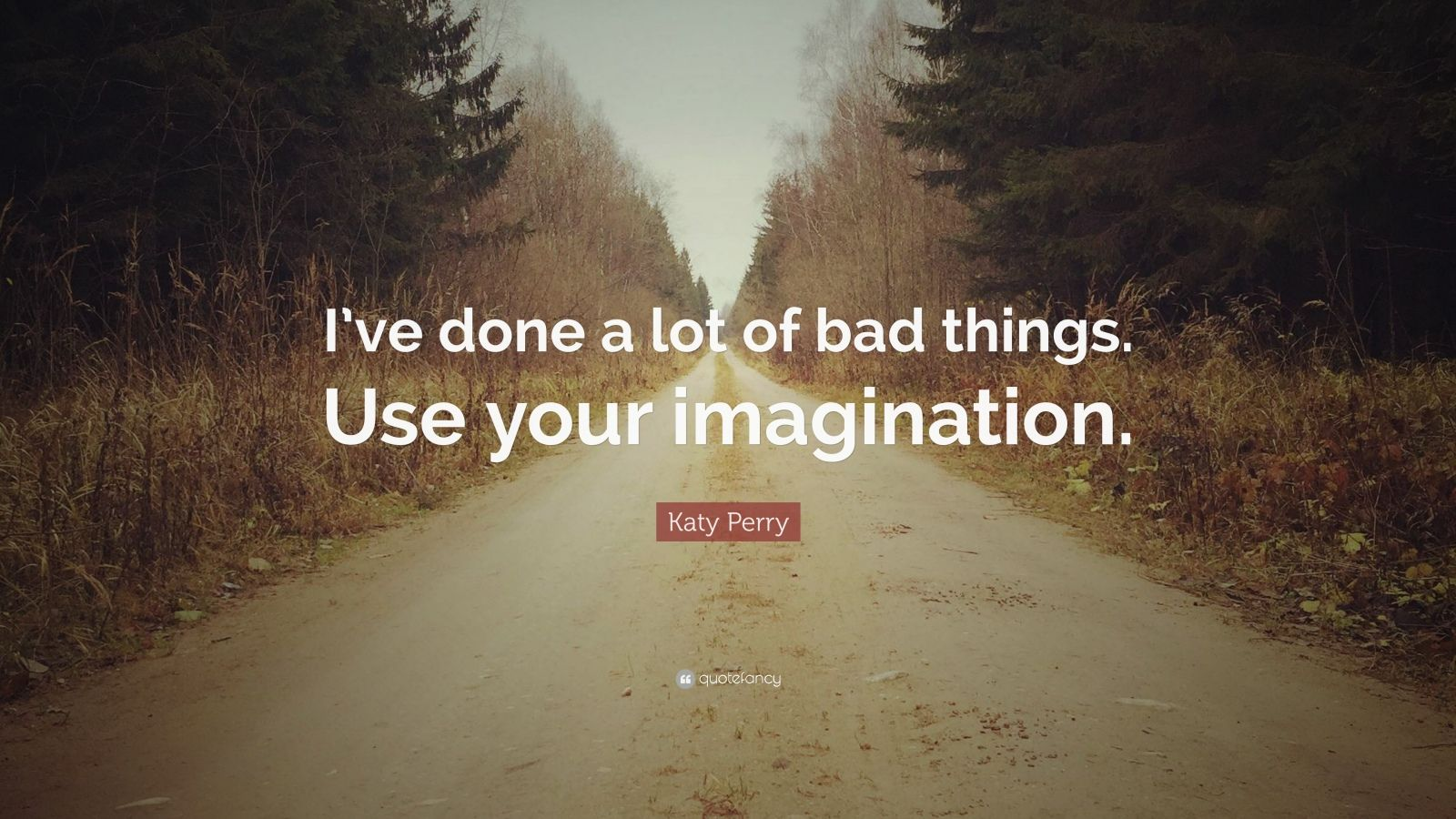 "Katy Perry Quote: ""I've done a lot of bad things. Use your imagination."""