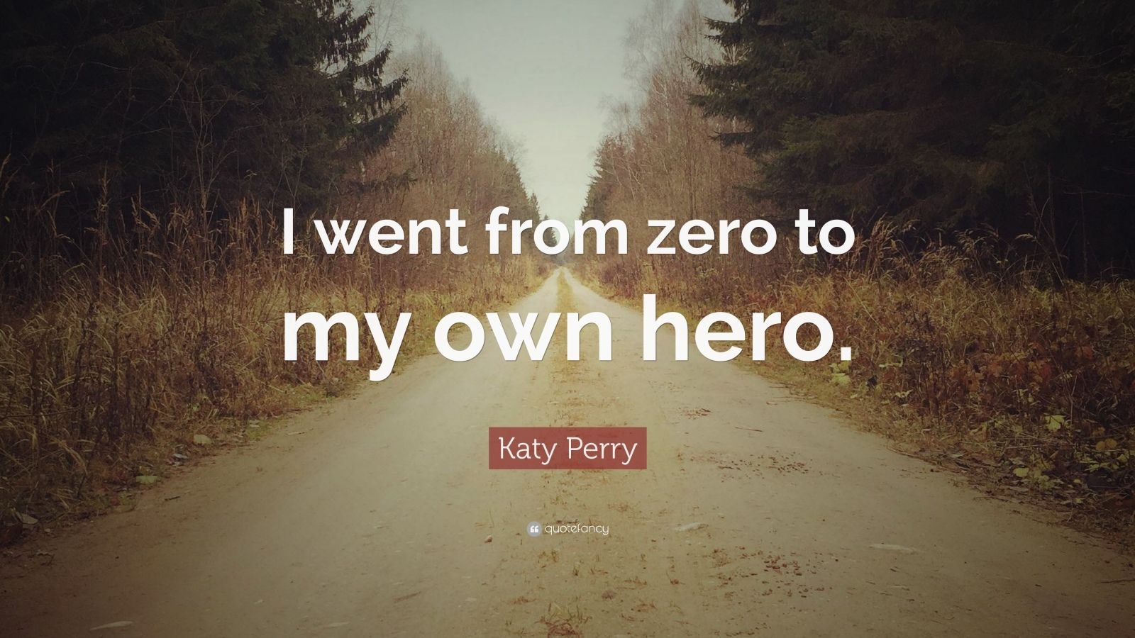 """Katy Perry Quote: """"I went from zero to my own hero."""""""