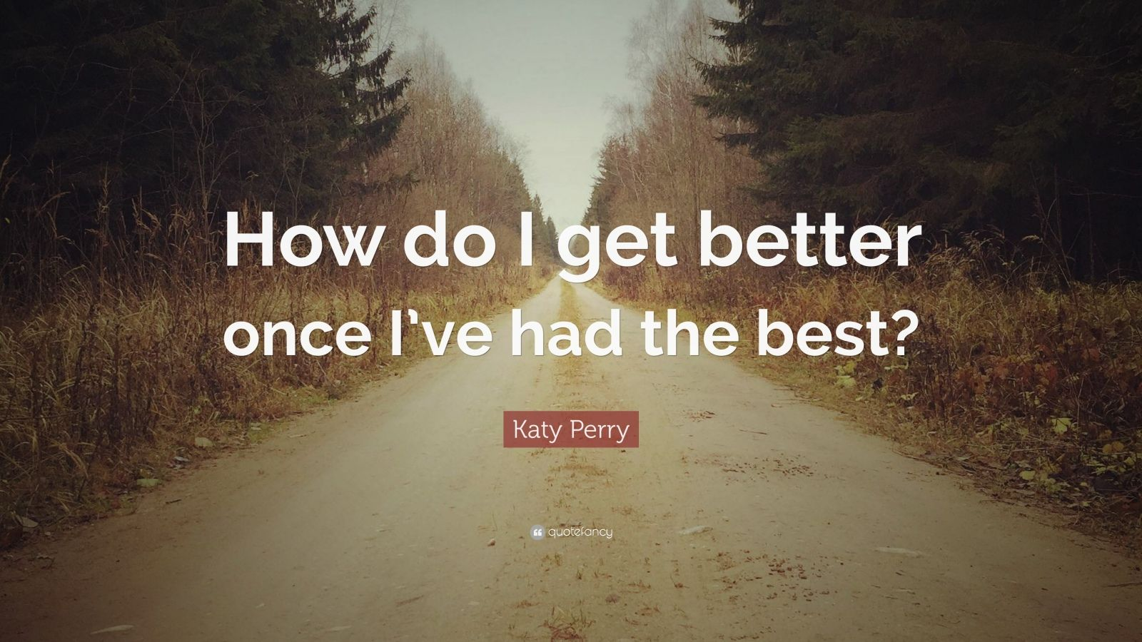 "Katy Perry Quote: ""How do I get better once I've had the best?"""