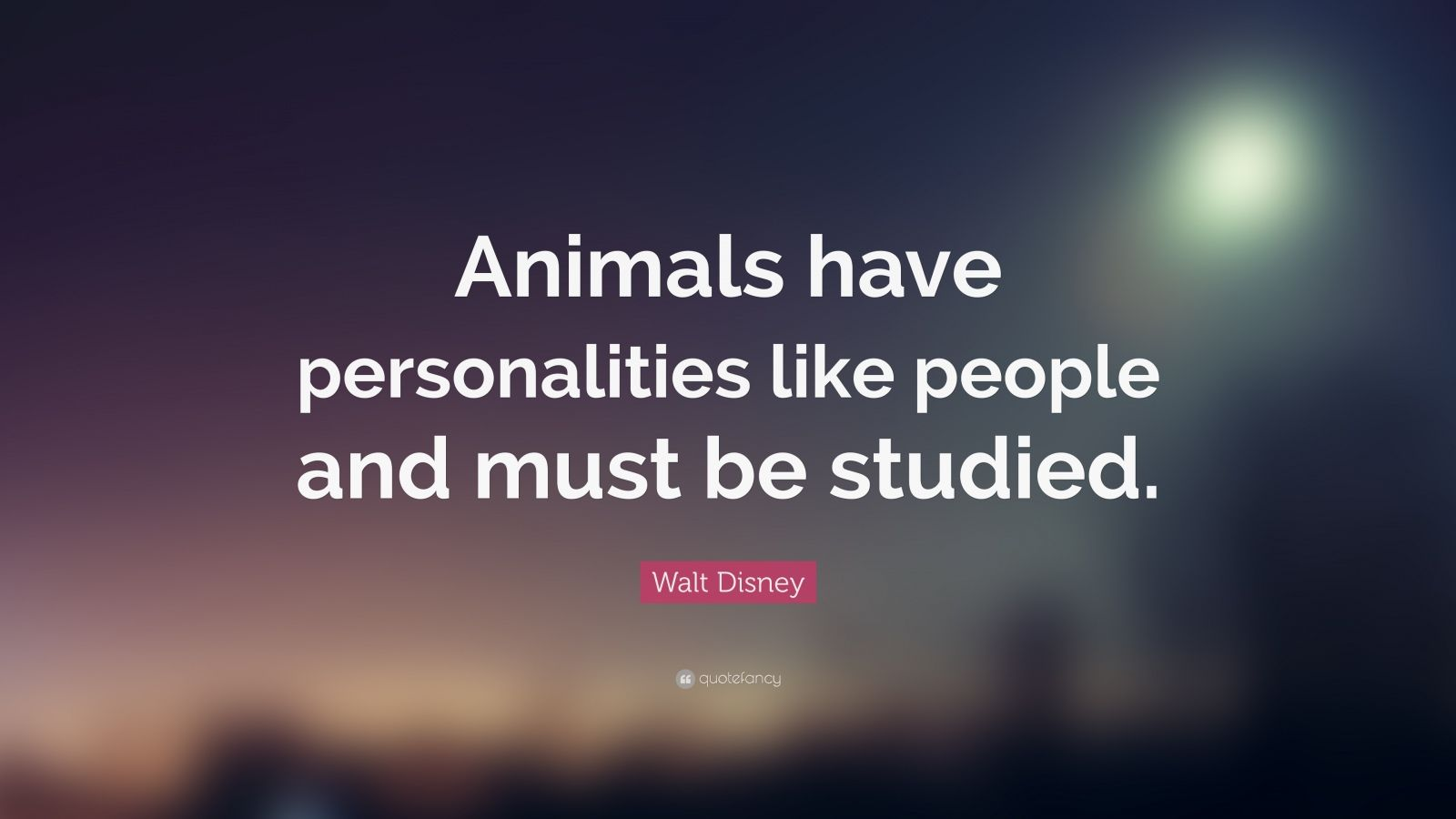 "Walt Disney Quote: ""Animals have personalities like people and must be studied."""