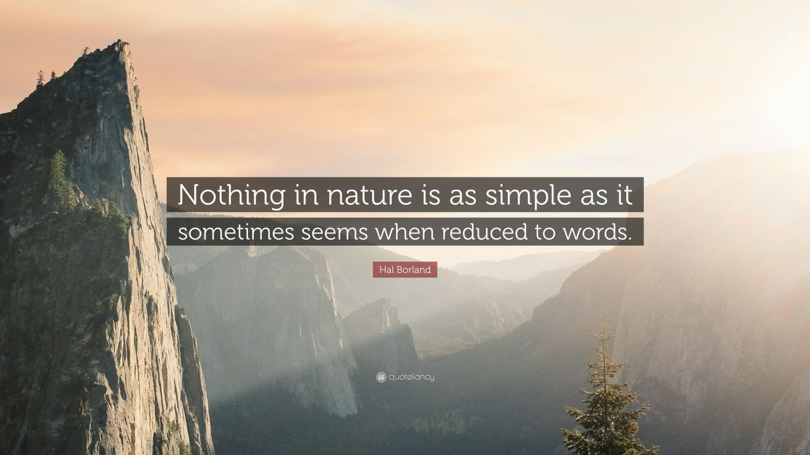 "Hal Borland Quote: ""Nothing in nature is as simple as it sometimes seems when reduced to words."""