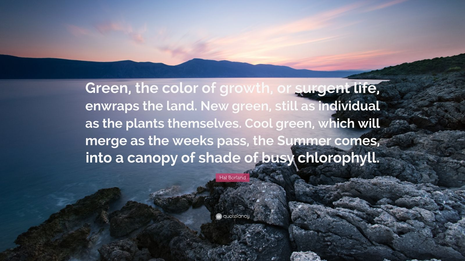 "Hal Borland Quote: ""Green, the color of growth, or surgent life, enwraps the land. New green, still as individual as the plants themselves. Cool green, which will merge as the weeks pass, the Summer comes, into a canopy of shade of busy chlorophyll."""