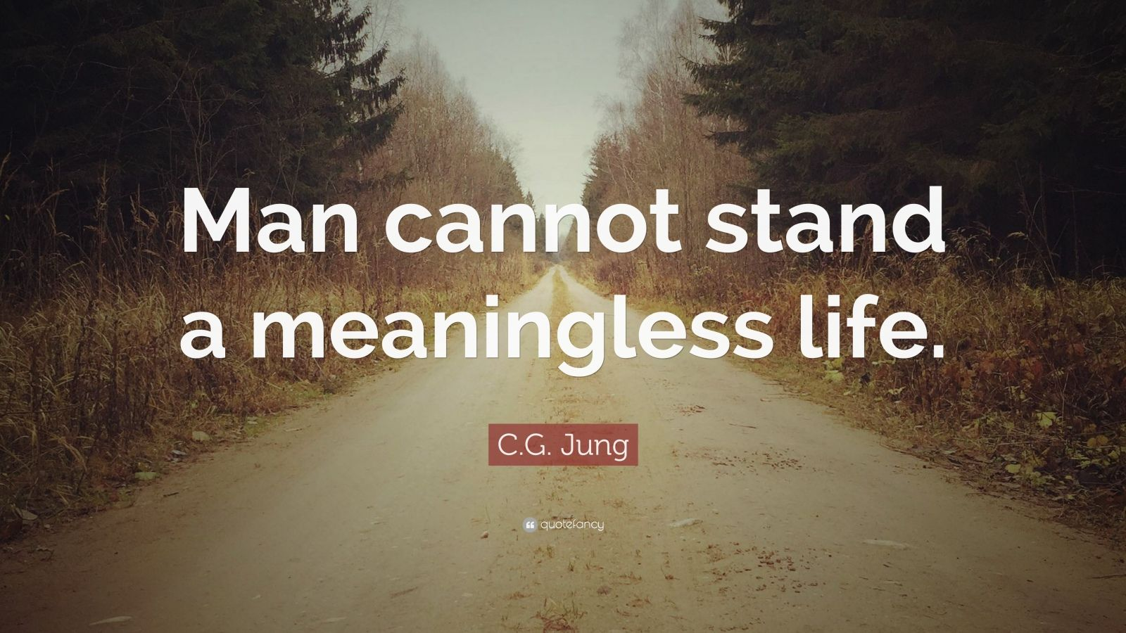 "C.G. Jung Quote: ""Man cannot stand a meaningless life."""