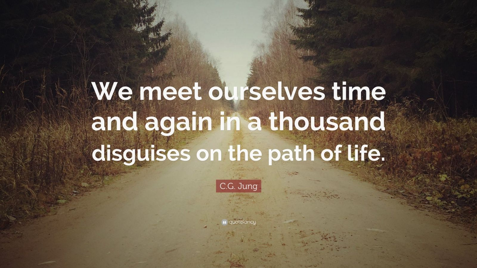 "C.G. Jung Quote: ""We meet ourselves time and again in a thousand disguises on the path of life."""