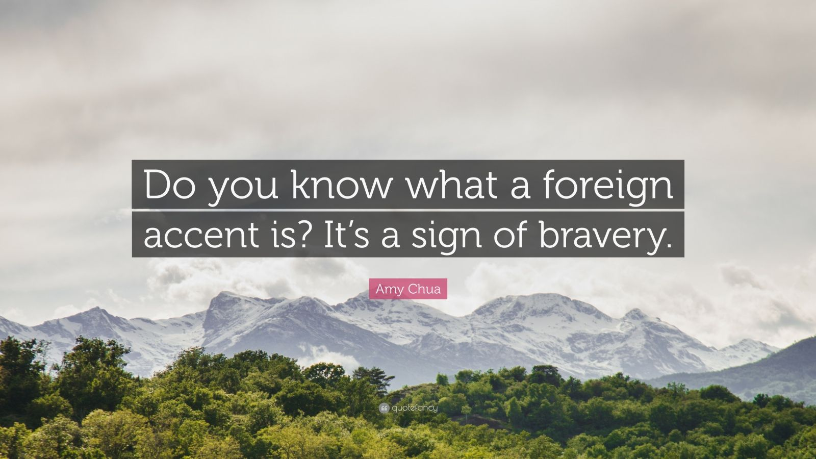 "Amy Chua Quote: ""Do you know what a foreign accent is? It's a sign of bravery."""